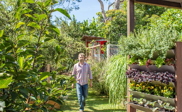 Garden design courses nsw for Landscape design jobs sydney